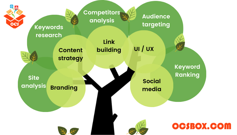 Do You Know These Things About Organic SEO
